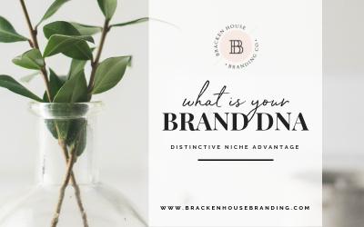 What is your Brand DNA: Distinctive Niche Advantage